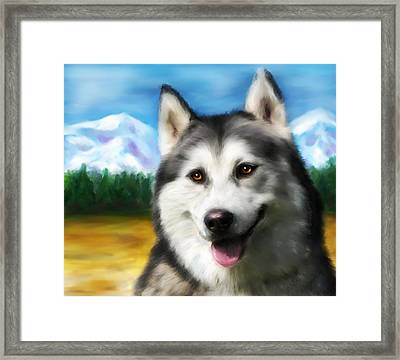 Smiling Siberian Husky  Painting Framed Print by Michelle Wrighton