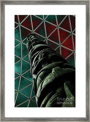 Solarised Totem Pole Framed Print by Urban Shooters