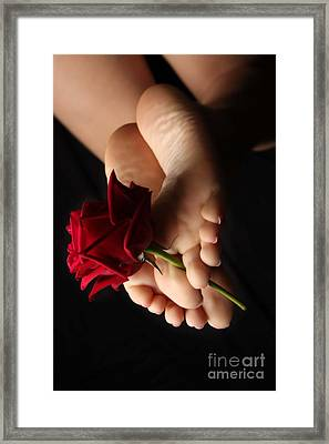 Sole Rose Framed Print by Tos Photos