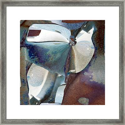 Soliloquy Framed Print by Paul Moss