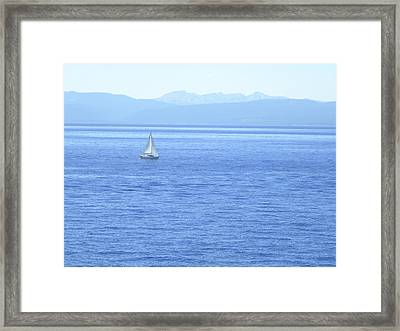 Solitary Sailing On Lake Tahoe Framed Print by Frank Wilson