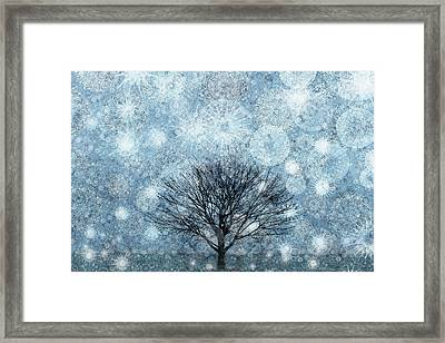 Solitary Winter Tree Caught In A Snow Storm Framed Print by Andrew Bret Wallis