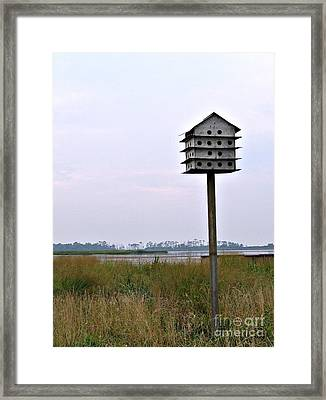 Framed Print featuring the photograph Solitude II by Nancy Dole McGuigan