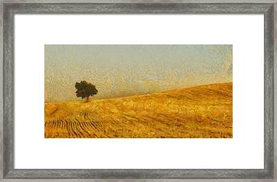 Solitude Is Golden Framed Print