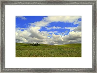 Framed Print featuring the photograph Solitude by Rima Biswas