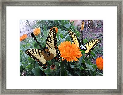 Someone Like You Framed Print by Eric Kempson