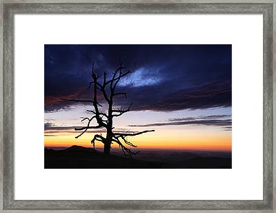 Something Wicked This Way Comes Framed Print by Metro DC Photography