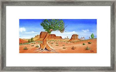 Somewhere In The Southwest Framed Print