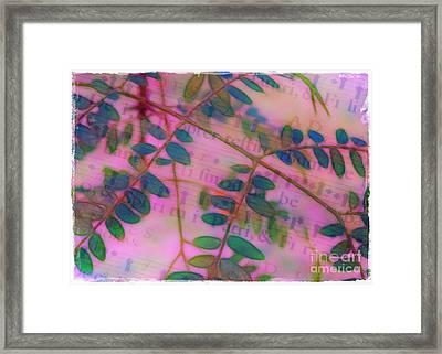 Song Of The Honey Locust Framed Print by Judi Bagwell