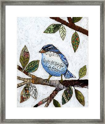 Songbird Framed Print by Amy Giacomelli