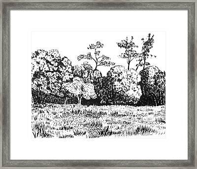 Sonoma County Framed Print