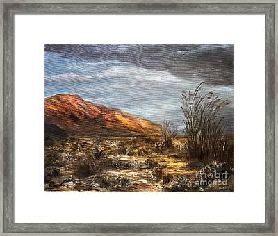 Sonora Desert Framed Print by Danuta Bennett