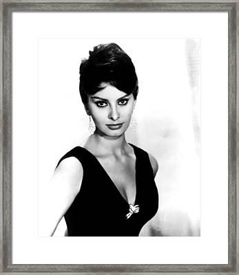 Sophia Loren, 1960 Framed Print by Everett