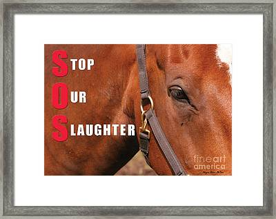 Framed Print featuring the photograph Sos Stop Our Slaughter by Megan Dirsa-DuBois