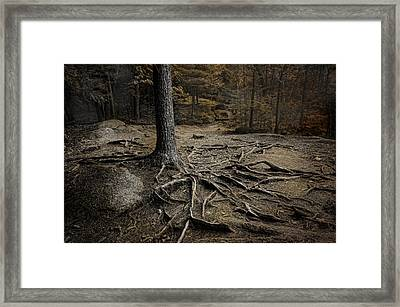 Soul Searching Framed Print by Robin-Lee Vieira