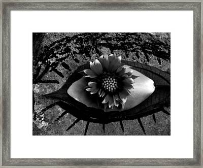Soul Window Framed Print by Chris Berry