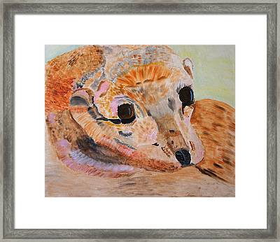 Framed Print featuring the painting Soulful Eyes Of A California Sealion by Meryl Goudey