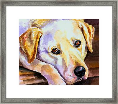 Soulful Framed Print by Lyn Cook