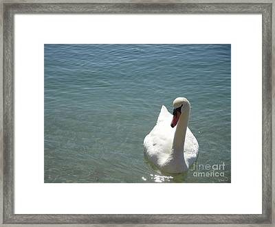 Soulmate One Framed Print by Laurence Oliver