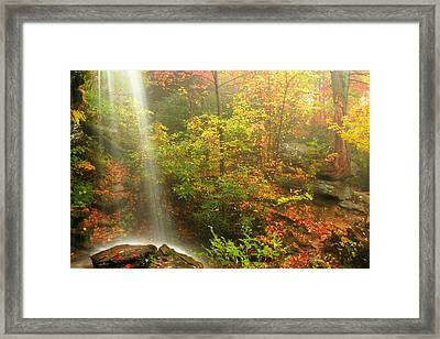 Sounds Of Autumn Framed Print by Darren Fisher