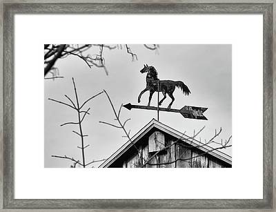 South By Southwest Framed Print by Guy Whiteley