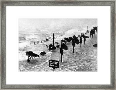South Carolina: Hurricane Framed Print