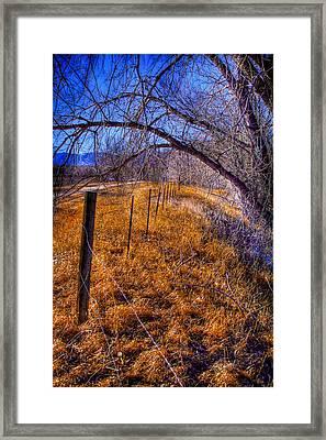 South Platte Fenceline Framed Print by David Patterson