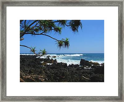 South Shore Of Maui Framed Print by Connie Fox