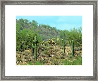 South West Desert Framed Print by David Killian