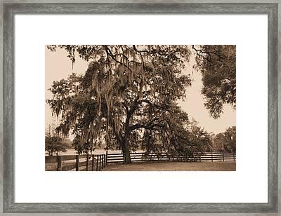 Southern Charm Framed Print by Kristin Elmquist