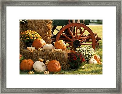 Southern Harvestime Display Framed Print by Kathy Clark