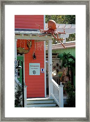 Souvenir Gift Shop Framed Print by Kathy Gibbons