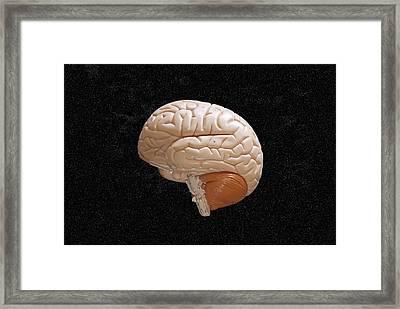 Space Brain Framed Print by Richard Newstead