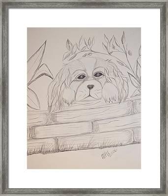 Spaniel Pup Framed Print by Maria Urso
