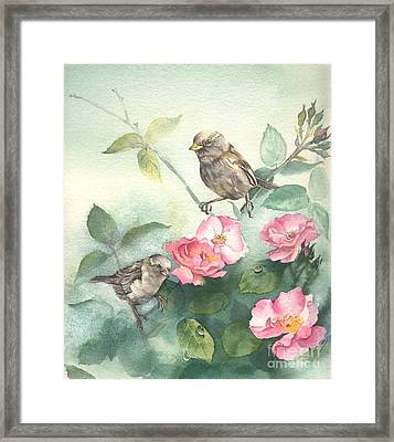 Sparrows And Dog Rose Framed Print