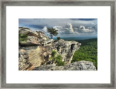 Sparse Vegetation Framed Print by Adam Jewell