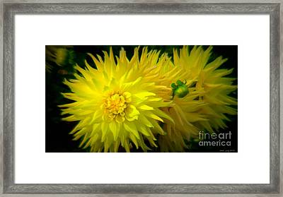 Speak To Me Softly Framed Print