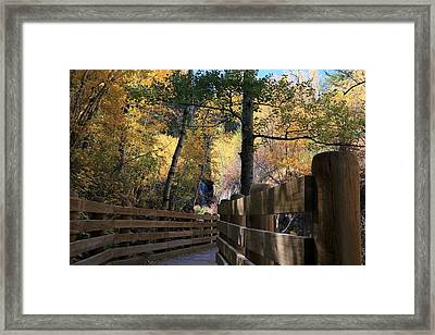 Spearfish Canyon Walkway Framed Print