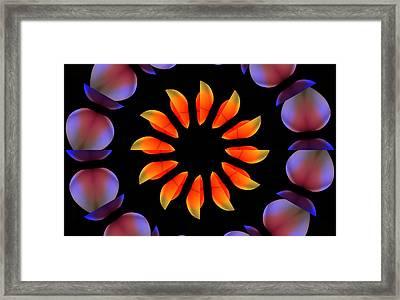 Special Fruits Framed Print by Steve K