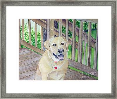 Spencer On Porch Framed Print