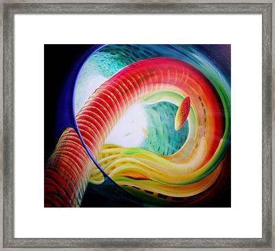 Sphere Serpula 2 Framed Print by Drazen Pavlovic