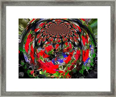 Spherical Bloom Framed Print by Jan Steadman-Jackson