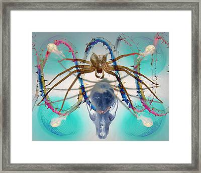 Spider Dna Framed Print by Adam Long