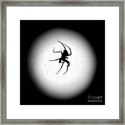 Spider In The Moon Framed Print by Val Armstrong