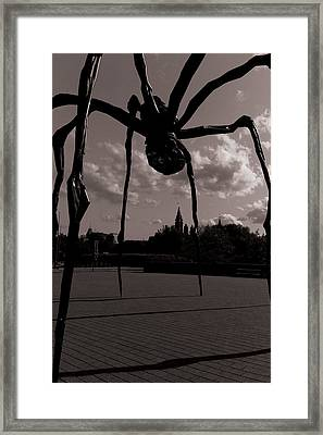 Framed Print featuring the photograph Spider by Josef Pittner