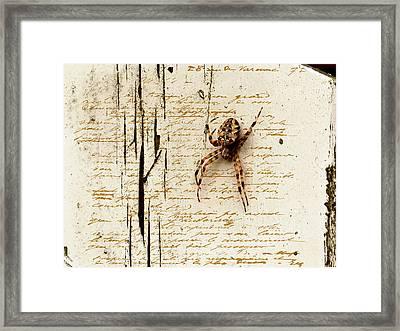 Spider Letter Framed Print by Yvon van der Wijk