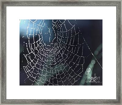 Spiderweb Blues Framed Print
