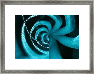 Spiderweb Work Framed Print by Odon Czintos