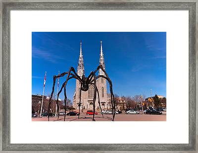 Framed Print featuring the photograph Spidy by Josef Pittner