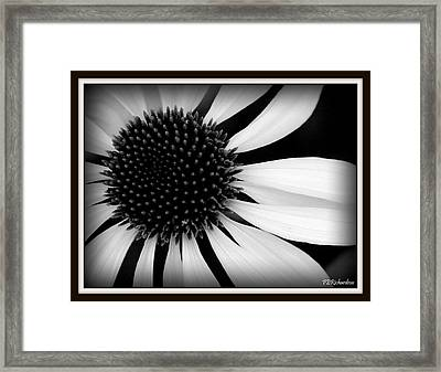 Spin Framed Print by Priscilla Richardson